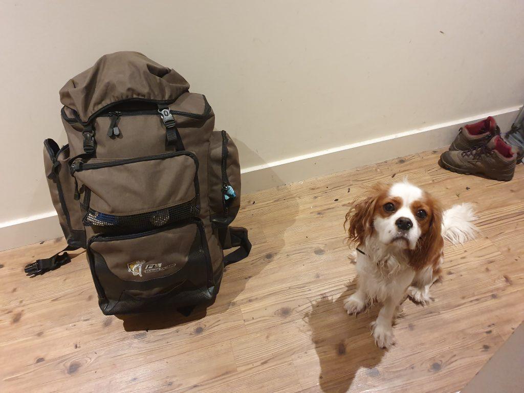 Dog & Rucksack